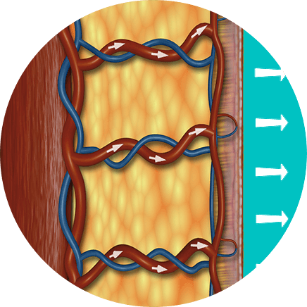 ympyrakuva-kaavio-alapaine