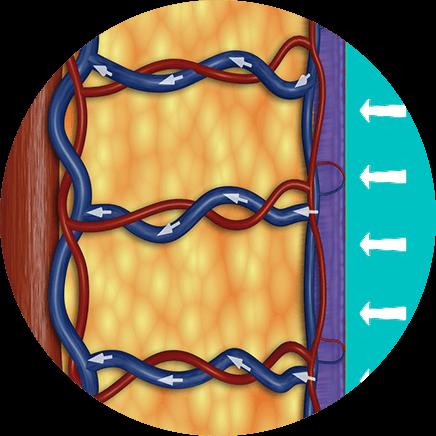 ympyrakuva-kaavio-ylapaine